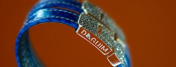 Daguim